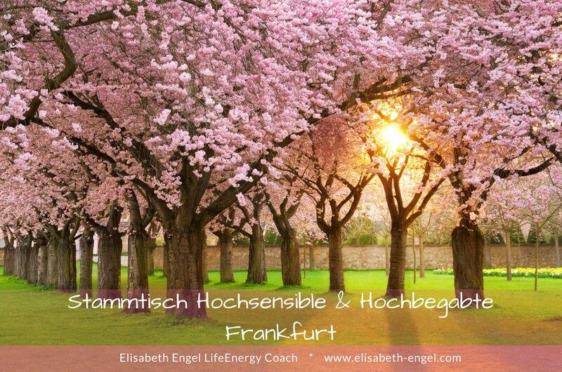 Stammtisch Hochsensibilität und Hochbegabung in Frankfurt